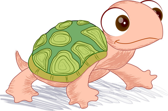 vector illustration of hand drawn turtle
