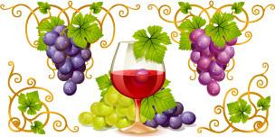 vector juicy grapes design graphic set