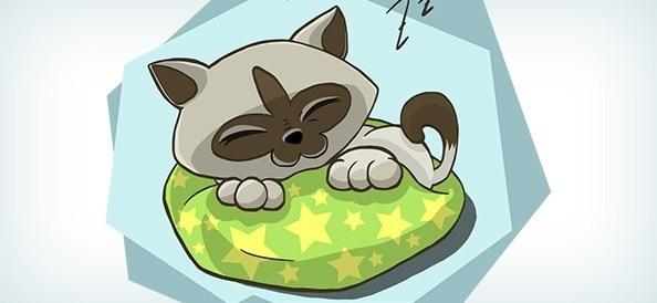 vector kitten sleeping