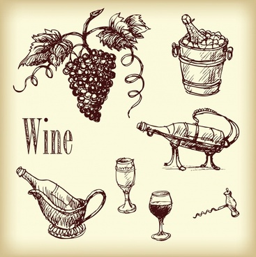 grape wine design elements retro handdrawn sketch