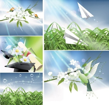 vector nature of light and plant