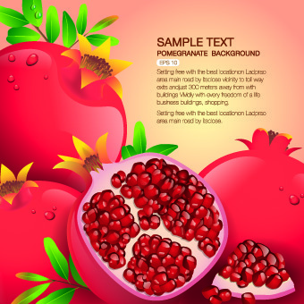vector organic food backgorunds