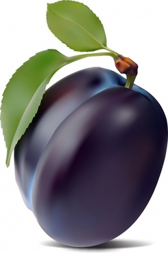 ripe plum icon closeup violet 3d realistic design