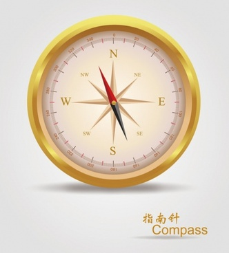 vector realistic golden compass