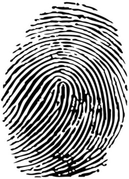 vector set of fingerprints design elements