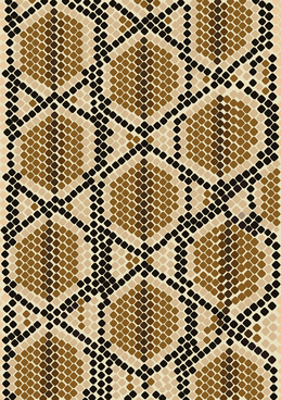 vector set of snake skin pattern elements