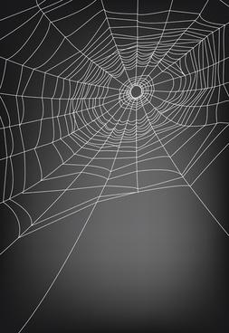 vector spider web design background graphics