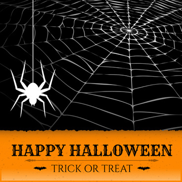 vector spider web design background graphics