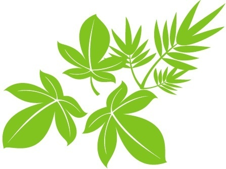 leaves background green design style