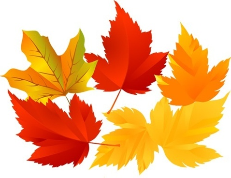 leaves decoration background yellow and red foliage design