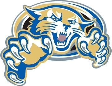 Vector Wildcat