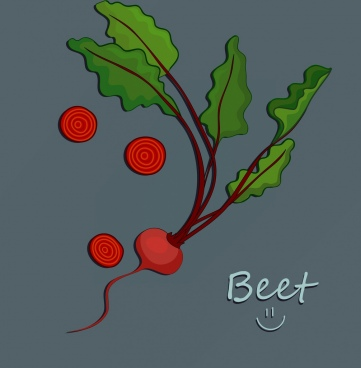 vegetable background beet icon green red design