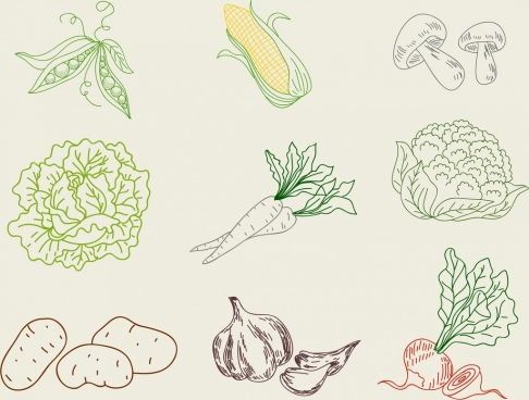 vegetable icons collection 3d handdrawn outline