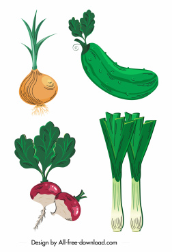 vegetable icons onion squash beet leek sketch