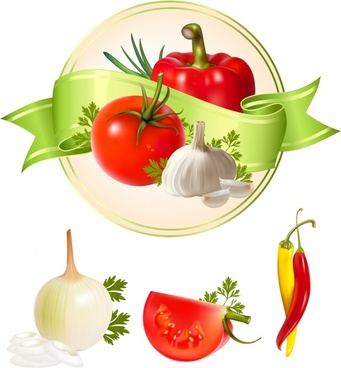 vegetable ingredients design elements colorful shiny modern sketch