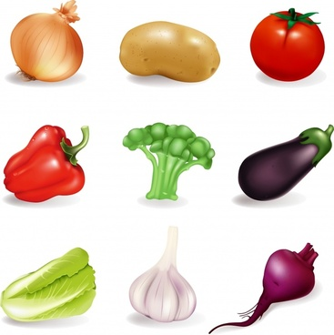 vegetables icons shiny colored realistic design
