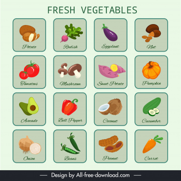 vegetables education background colorful flat design isolation decor