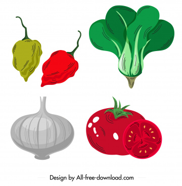 vegetables icons chilli chok choy onion tomato sketch