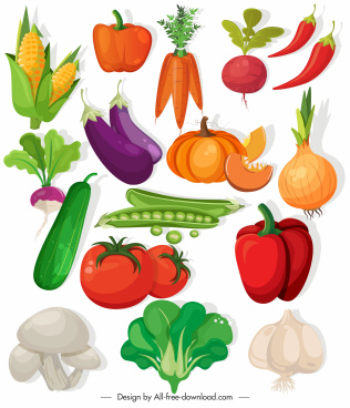 vegetables icons colorful classic design