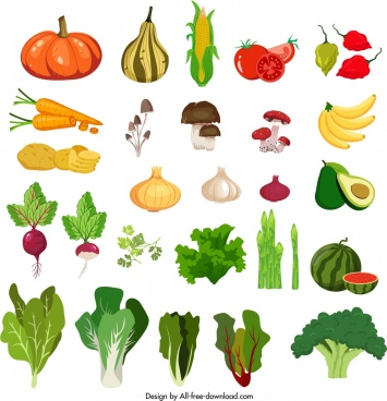 vegetables icons colorful classical design