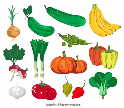 vegetables icons colorful classical handdrawn design