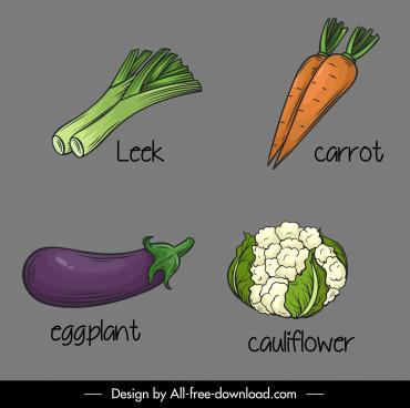 vegetables icons handdrawn leek carrot eggplant cauliflower sketch