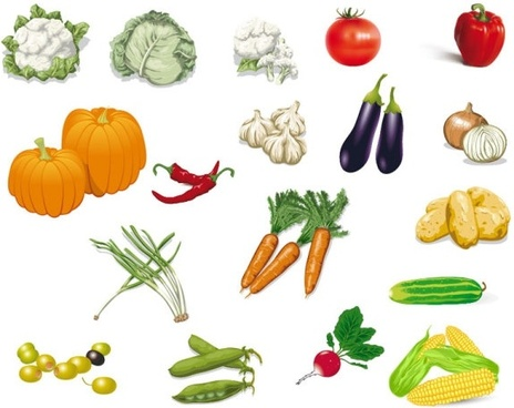vegetables image 02 vector