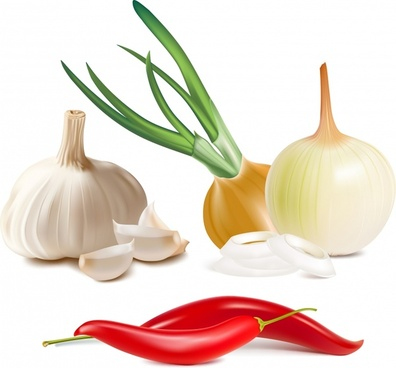ingredients background onion garlic chili sketch modern 3d