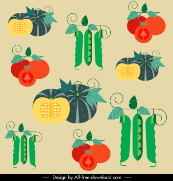 vegetables pattern colorful flat pumpkin tomato bean sketch