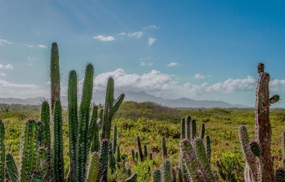 venezuela mountains sky