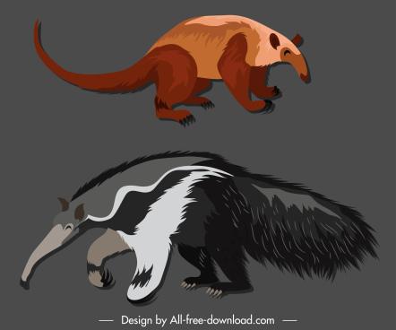 vermilingua species icons colored handdrawn sketch