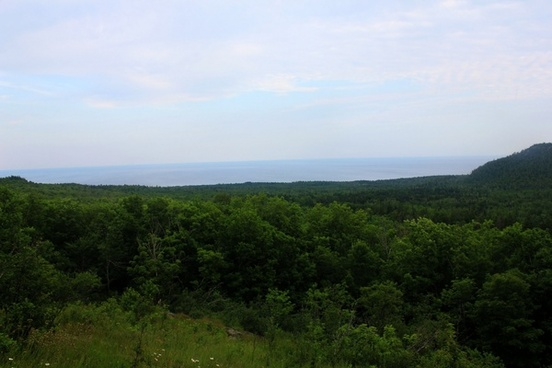 view of the forest and lake superior in superior national forest minnesota