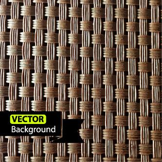 vine braid background vector