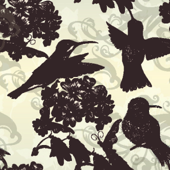 vintage birds and butterflies design vector