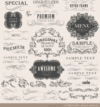vintage frame ornaments and calligraphic vector set