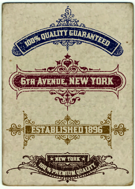 vintage labels design vector set