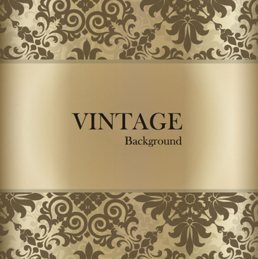 vintage lace background vector