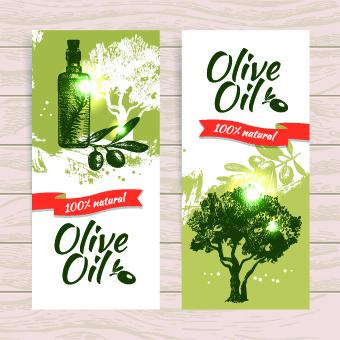 vintage olive oil background vector