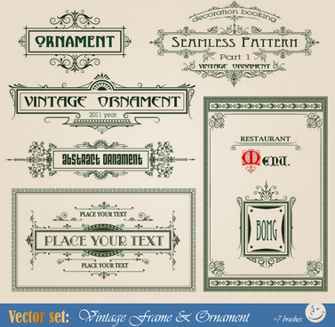 vintage ornaments and frames design vector