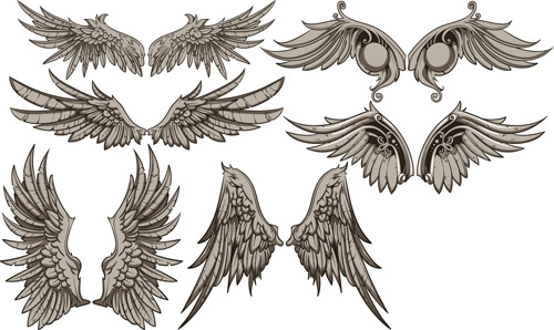 vintage wings design vector set