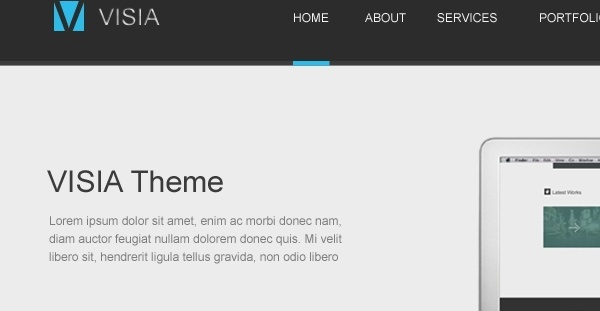 Visia Website Theme PSD