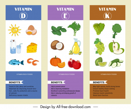 vitamin food infographic templates colorful decor handdrawn sketch