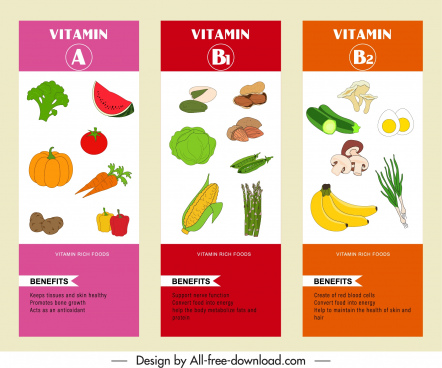 vitamin infographic templates colorful handdrawn vegetables fruit sketch