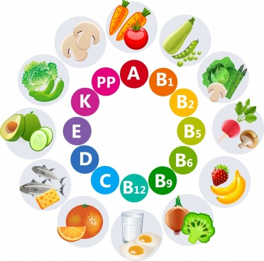 vitamins advertisement multicolored vegetable words icons circle design