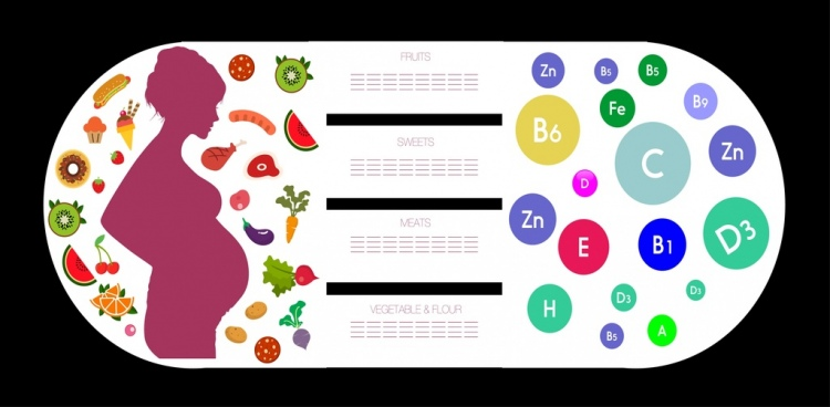 vitamins infographic template pregnant silhouette food icons decoration