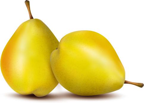 vivid fruits design vector graphics