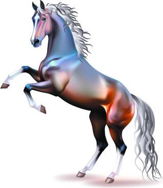 vivid horses design vector
