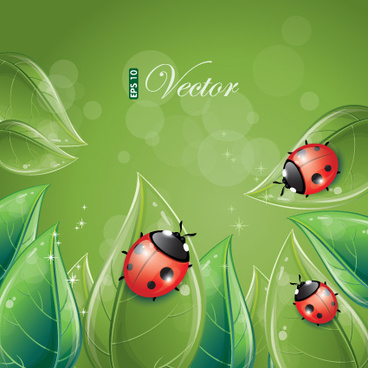 vivid insects design element vector