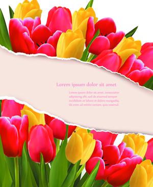 vivid tulips backgrounds vector