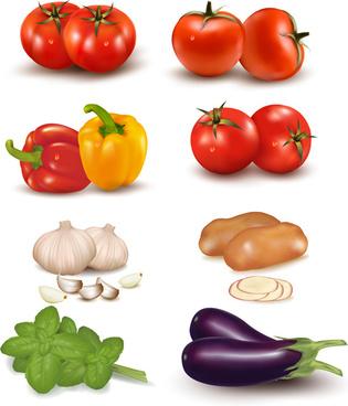 vivid vegetables design vector